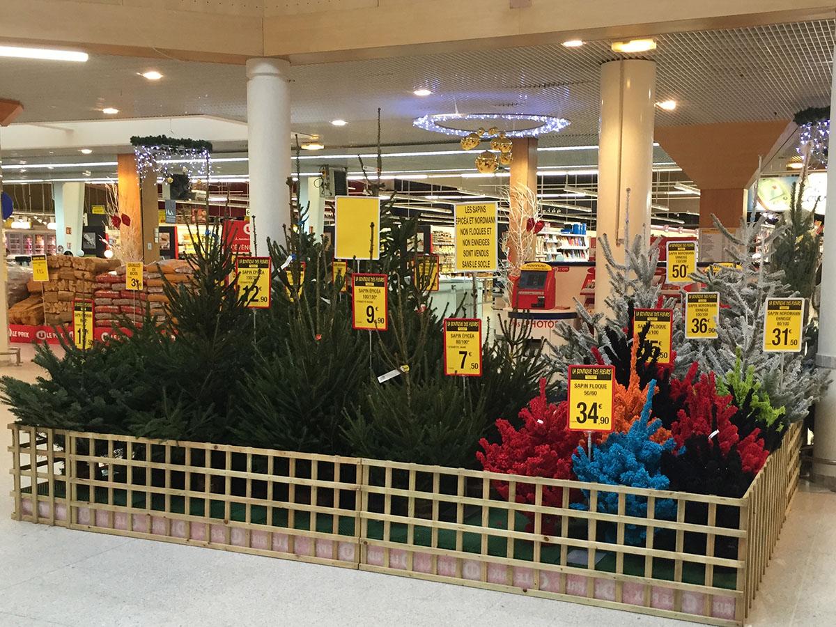 exposition-magasin-super-u