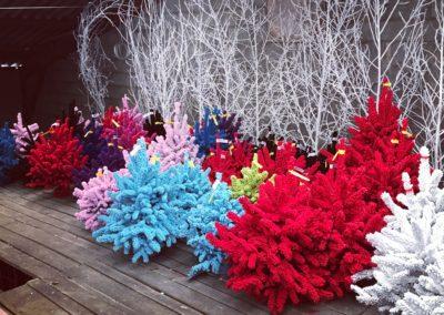 sapins floqués couleurs