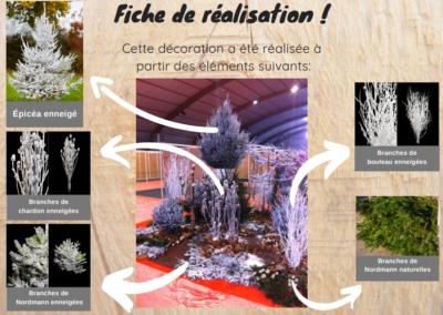 Rochefort-Sapins-décoration-événement-Noël