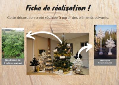Rochefort-Sapins-décoration-intérieur